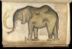 An Elephant, In Matthew Paris's 'Book Of Additions'